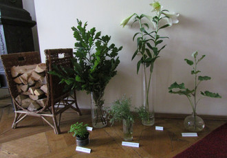 St. John's Flowers; Summer, Herb and Flower Exhibition 2012