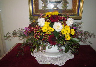 Camellias and Chrysanthemums, Spring flower exhibition 2015