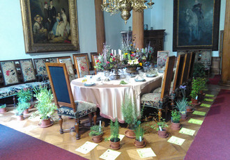 St. John's Flowers; Summer, Herb and Flower Exhibition 2017